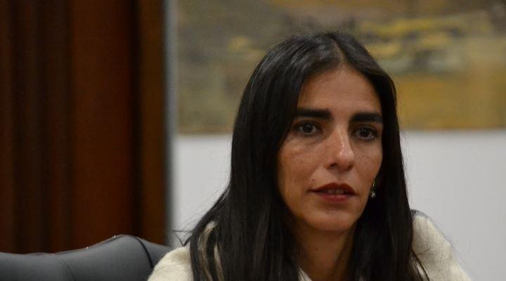 """Ministra de Salud: si hay """"un solo médico extranjero para el SUS y yo renuncio mañana"""""""