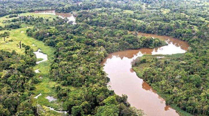 Los territorios indígenas de Bolivia sufren más deforestación que los de los países de la región. Amazonía boliviana. Foto: Los Tiempos