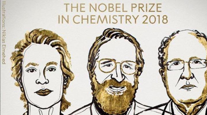 3 científicos ganan el Nobel de Química por aplicar el poder de la evolución para diseñar proteínas revolucionarias
