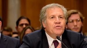OEA enviará una misión para elecciones primarias
