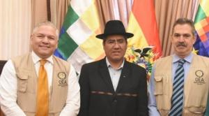 Analista considera que misión de la OEA asiste a primarias para no quedar fuera de las generales