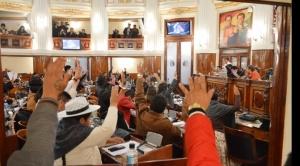 Diputados reduce plazos para convocar a elecciones y Borda anuncia que el TSE puede modificar de nuevo la fecha de comicios