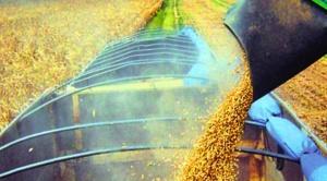 """FAO considera """"fatal"""" apostar por biodiesel porque no ayuda a la """"seguridad alimentaria"""""""