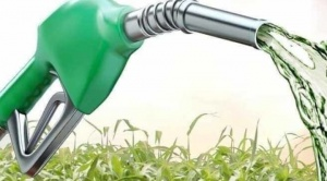 """Empresarios rechazan la versión de la FAO y ven que producción de biocombustibles es """"virtuosa"""" 1"""