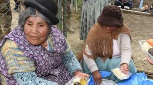 """Una mujer de Huarina hace furor con plato de pescados: """"Es gratis, coman, coman"""" dijo a los damnificados"""