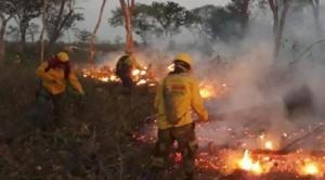 No hay señales de lluvia y crece el fuego en Santa Cruz: ya ha destruido medio millón de hectáreas 1