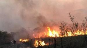 En fuego se ensaña y se descontrola en San Matías y Concepción