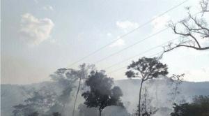 Por incendios, Gobernación de La Paz declara zona de desastre al Parque Madidi 1