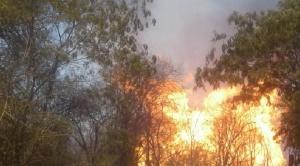 Incendio en gasoducto Santa Cruz Yacuiba deja al menos cuatro heridos 1