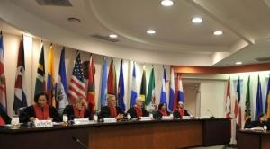 Gobierno dice que la CIDH no adoptará decisiones sobre reelección indefinida 1