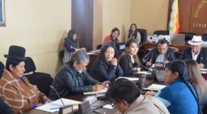 Habilitan a 20 de los 35 postulantes a vocales del Tribunal Supremo Electoral