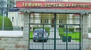 TSE atribuye registro ilegal de militantes a los partidos y pide a la gente llenar formularios de renuncia