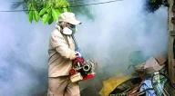 Sube a 4 los fallecidos por dengue en Caranavi y a 260 los casos confirmados