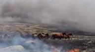 Mesa demanda cinco medidas inmediatas para enfrentar incendios en la Chiquitanía
