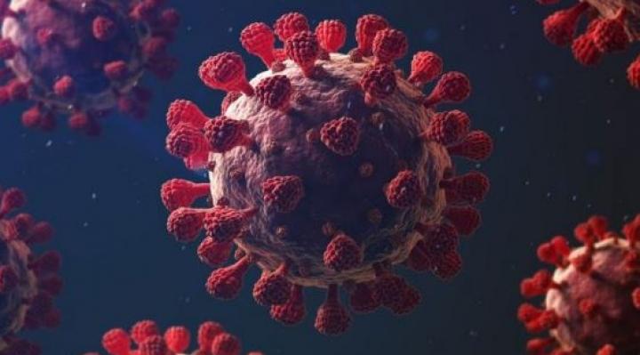 Expertos alertan de cinco características que hacen mortal al coronavirus