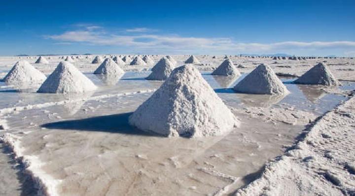 Hasta febrero de 2022, YLB decidirá qué empresa hará extracción directa de litio en Uyuni, Llipi y Coipasa