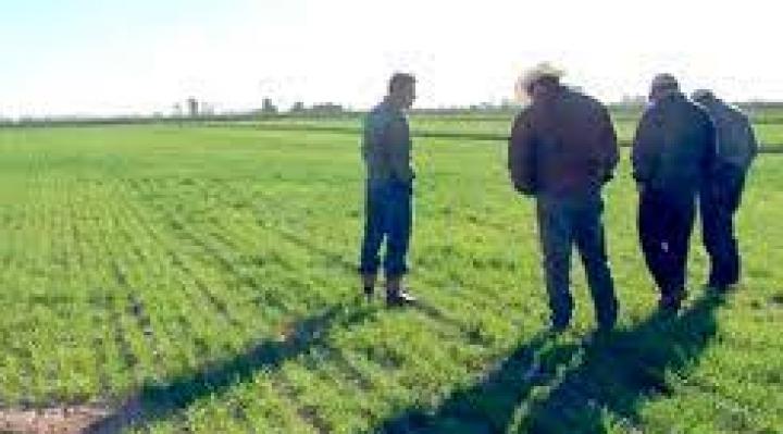 El Director del INRA no asistirá a reunión agraria cruceña, Camacho lo califica de boicot