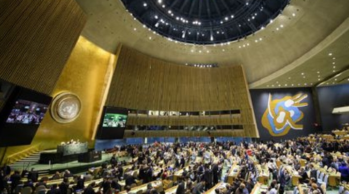 Luis Arce pedirá alivio a la deuda para Bolivia en la asamblea de la ONU en New York