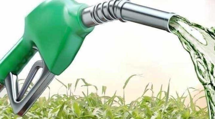 """Empresarios rechazan la versión de la FAO y ven que producción de biocombustibles es """"virtuosa"""""""