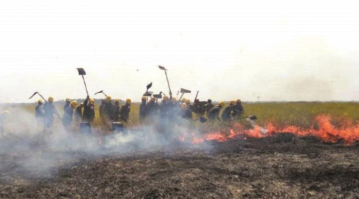 Continúan focos de calor en Chiquitanía, pobladores y Gobernación piden ayuda para sofocar el fuego