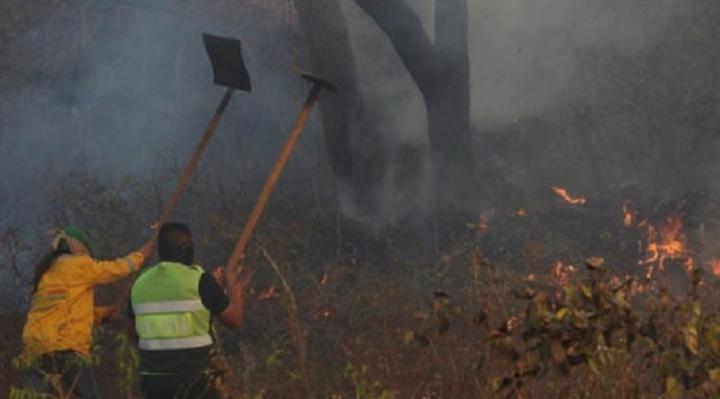 Contingente de Bomberos se reduce debido al cansancio en la Chiquitania