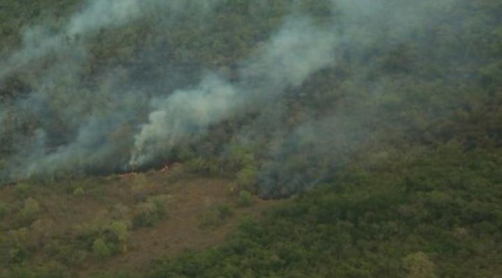 Gobierno informa que aún existen focos de calor en San Rafael, San José, Concepción, San Antonio de Lomerío y San Ignacio de Velasco