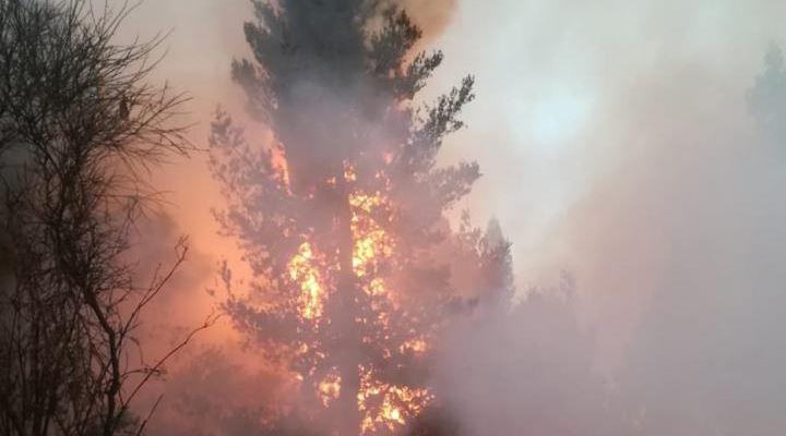 Parque Tunari arde por segundo día y enviarán a avión Supertanker para sofocar el fuego