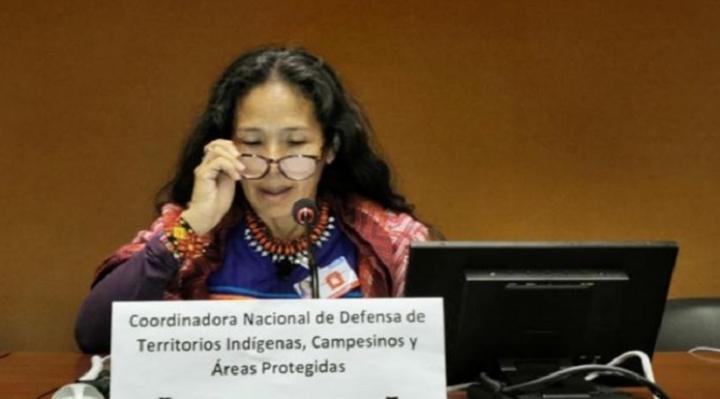 Indígenas y activistas denuncian a Morales ante la ONU por incendios, extractivismo y omisión de consulta