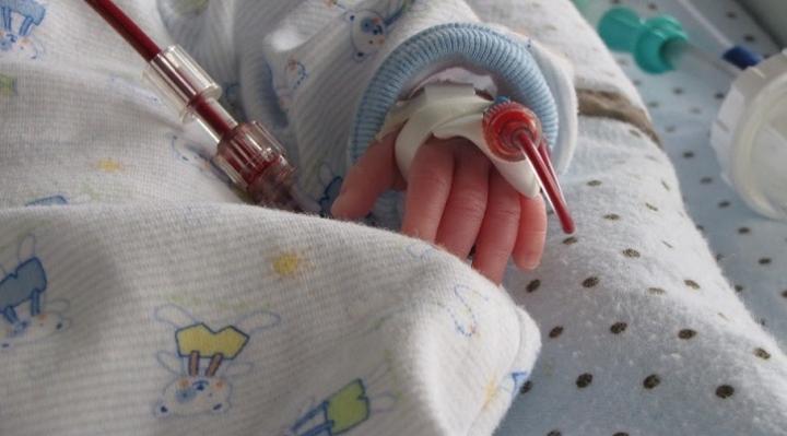 En Santa Cruz se denuncia riesgo de vida de bebé por oposición de sus padres a transfusión de sangre