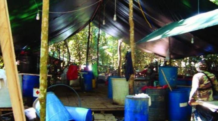 Nuevo golpe a la producción de cocaína en el Trópico de Cochabamba