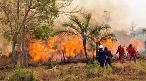 """Empresario aéreo dice que ofreció sin éxito un """"avión bombero"""" para tratar de mitigar los incendios"""
