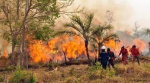 El Gobierno de Canadá confirma ayuda para combatir incendios en Bolivia