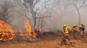 Usaid donará 100 mil dólares para contrarrestar incendios en el país