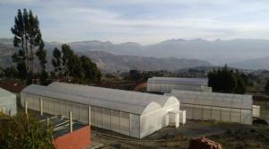 Orkidea Andina lanzará iniciativa agraria para familias del Altiplano 1