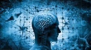 """Seis formas de """"reiniciar tu cerebro"""" después de un año difícil de Covid-19"""