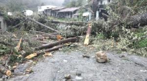 Reportan enfrentamientos en Yolosita, los Yungas que dejó un herido de gravedad