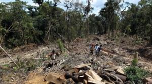 Probioma advierte que Bolivia atraviesa un desastre ambiental que ya cobra factura