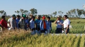 INRA: cinco pueblos indígenas tienen la misma tierra que Bartolinas y campesinos en Santa Cruz