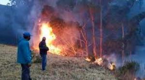 CEJIS alerta que en junio se registraron 226 focos de calor en territorios indígenas y 452 en Áreas Protegidas