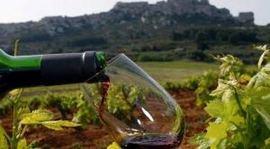EEUU busca abrir su mercado a los vinos y singanis de Tarija