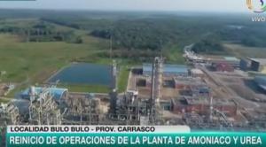Arce reabre planta de Bulo Bulo y anuncia procesos contra responsables de su cierre