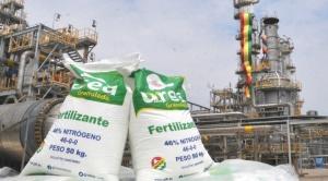 """Exministro Ortiz detecta al menos cuatro """"fallas de origen"""" en la Planta de Urea"""