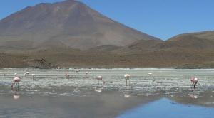 Nor Lípez plantea la aprobación de una ley para explotar el litio y alerta sobre contaminación del agua