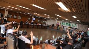 """Senado impugna ley """"separatista"""" cruceña para designación de autoridades regionales"""