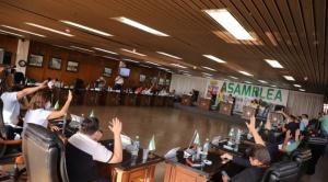 El MAS anuncia recurso de inconstitucionalidad contra ley para elegir autoridades regionales