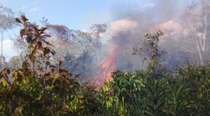El Madidi se incendia y el auxilio se hace esperar