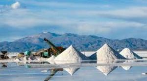 Bolivia y Argentina impulsan creación de un Centro Andino para la Cooperación en Litio