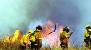 Chiquitania: continúan los trabajos para combatir el fuego y llegan brigadistas del exterior para apoyar en la campaña