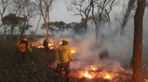 """Gobierno analiza mecanismos para bajar chaqueo en sistemas productivos hasta llegar a """"fuego cero"""" en la Chiquitanía"""