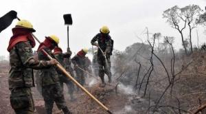 FAN: Incendios forestales afectaron una superficie de 801.128 hectáreas en 16 áreas protegidas
